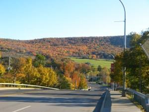 Hills of Oneonta, NY