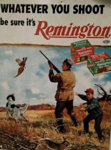 Gun, Dog, Son, Pheasant and Rabbit
